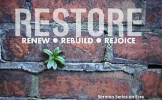 restore-with-plant-with-bigger-photo-subtitle-increased